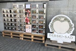 """Jabłka z automatu – nowa forma sprzedaży w gospodarstwie """"Dębski Sad"""" (zdjęcia)"""