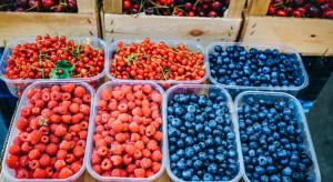 Jakie ceny malin, borówek i czereśni na rynkach hurtowych?