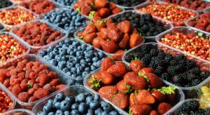 Ankieta nt. uprawy owoców jagodowych - zapraszamy do udziału!