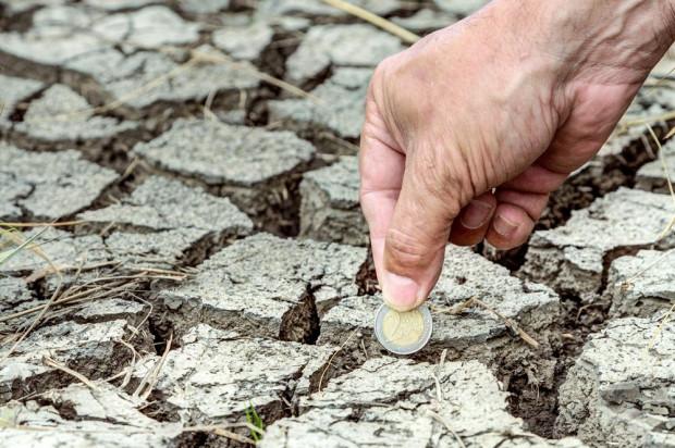 MRiRW: Ruszyła ostatnia transza pomocy suszowej