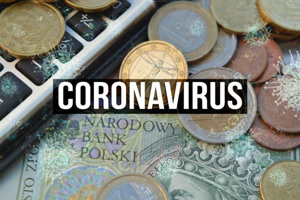 Pomoc po koronawirusie – z PROW do 5 tys. euro dla rolnika oraz do 50 tys. dla firm
