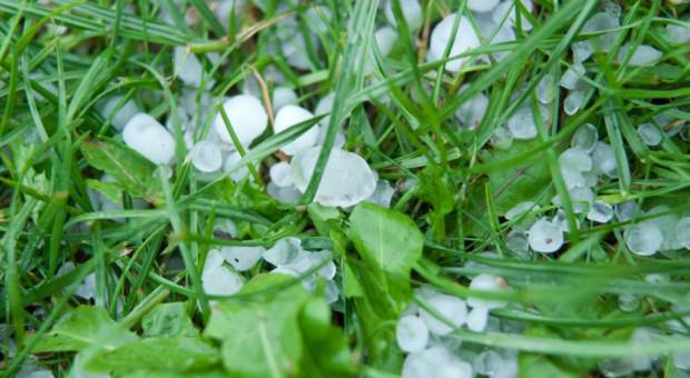 RCB ostrzega przed intensywnym deszczem, burzami z gradem i silnym wiatrem