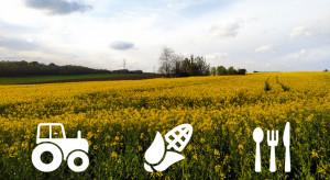 Polskie innowacje odpowiedzią na nowe wymogi Unii Europejskiej