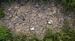 IUNG: zmniejsza się obszar suszy