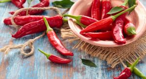 Dziś swoje święto ma czerwona ostra papryczka chili