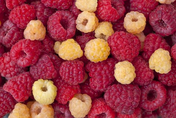 Wartość prozdrowotna owoców maliny związana jest z ich kolorem