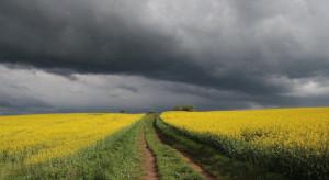 Pogoda: Zachmurzenie umiarkowane, przelotne opady deszczu