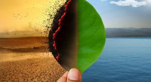 Zielony Ład - czyli nadchodzą dobre czasy dla rolnictwa eko