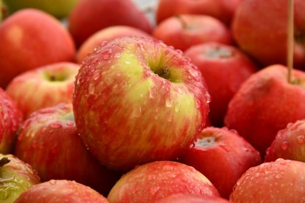 Jabłka droższe niż cytrusy. Tak wysokich cen nie było od lat