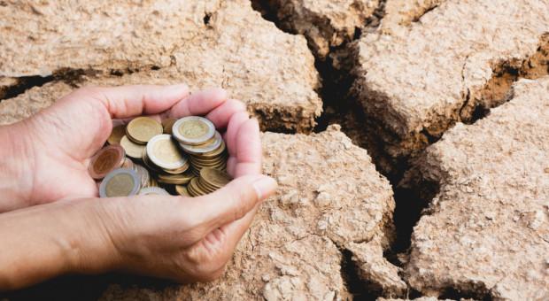 Pomoc po suszy dla rolników poszkodowanych przez COVID-19