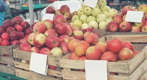 Ceny jabłek w hurcie w granicach 6 zł/kg