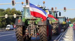 Holandia: Protest rolników przeciw ograniczeniom ekologicznym