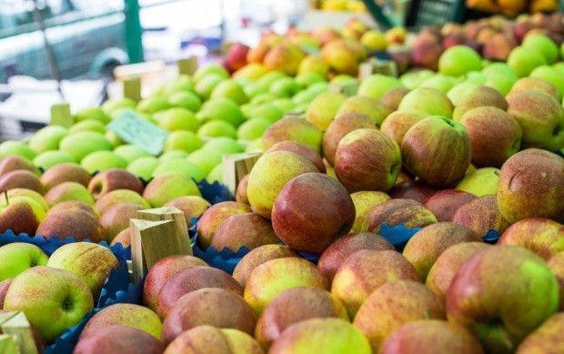 Wczesne odmiany jabłek w handlu - jakie ceny?
