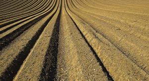 Komisja finansów za zmianami w ustawach o spisach: rolnym i powszechnym