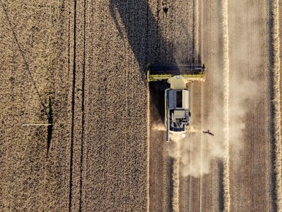 Resort rolnictwa chce zmienić zasady działania grup producentów rolnych
