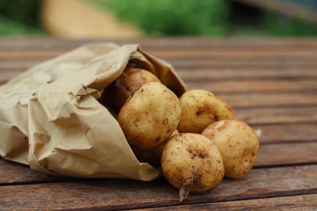 Czechy: powstał automat do zakupu ziemniaków