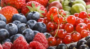 Na Broniszach trwa pełnia sezonu. Jak kształtują się ceny i dostępność owoców?