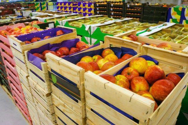 GUS: w 2019 r. Polska umocniła pozycję eksportera żywności