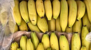 Wielkopolskie: 19 kg kokainy w bananach w sklepie Biedronka