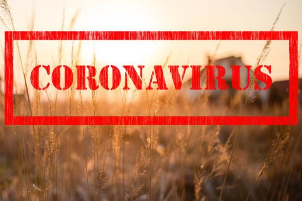 Trwa nabór wniosków o udzielenie pomocy rolnikom poszkodowanym przez suszę i COVID-19