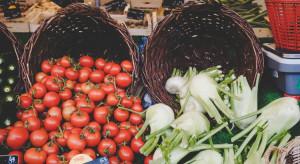 USA rozszerzą program pomocy dla rolnictwa w związku z COVID-19