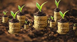 Ceny ziemi rolnej w 2019 r. - 47,2 tys. za ha