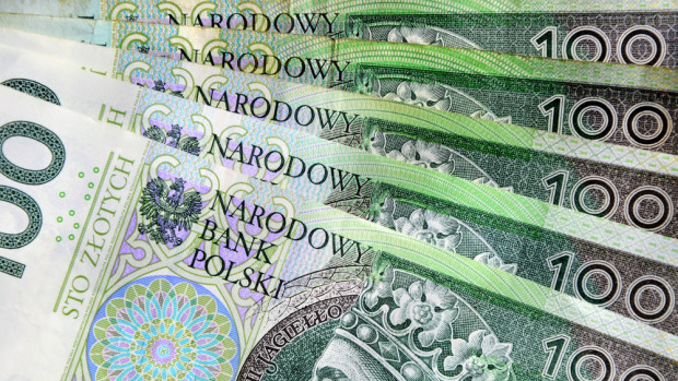 Od 16 października będą wypłacane 70-proc. zaliczki na poczet dopłat bezpośrednich