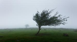IMGW ostrzega przed burzami z gradem i silnym wiatrem w 13 województwach