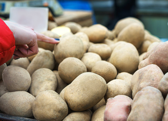 IJHARS: kontrola jakości ziemniaków nie wykazała nieprawidłowości