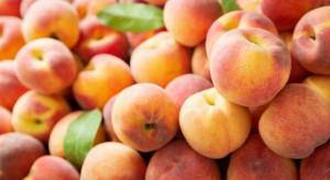 Bronisze: Ceny brzoskwiń w hurcie wynoszą 3-5 zł/kg
