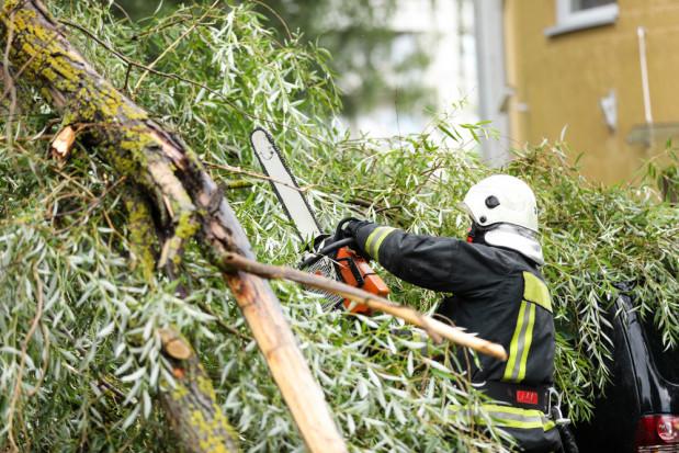 PSP: prawie 600 interwencji w związku z burzami i silnym wiatrem