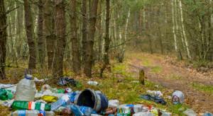 Ministerstwo klimatu: 5 tys. złotych kary za śmiecenie w lasach