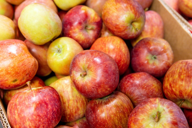 Ukraina: Jabłka w marketach kosztują nawet 8 zł/kg