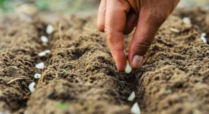 Prezes GUS: na podstawie danych ze spisu rolnego kształtowana jest polityka żywnościowa