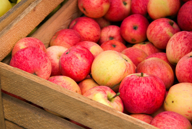 Bronisze: Wyrównane ceny letnich odmian jabłek, w sprzedaży dostępne jest Lobo