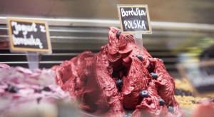 Borówka staje się coraz popularniejszym smakiem rzemieślniczych lodów