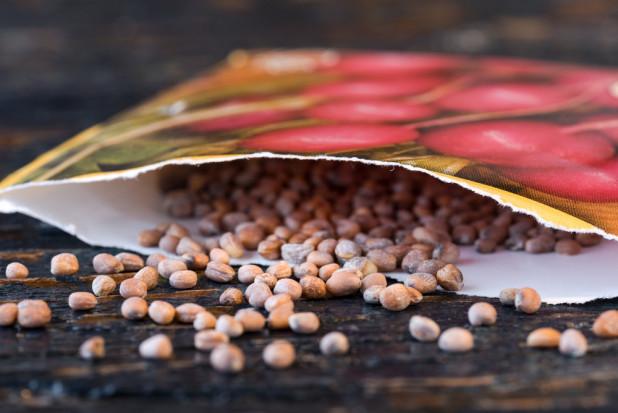 Sprzedaż  zagranicznych nasion roślin zakazana na Amazonie w USA
