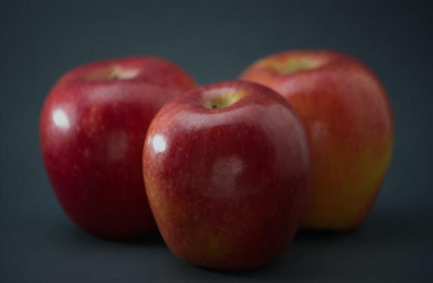 Francja: Dobre zbiory nowej odmiany klubowej jabłoni – Zingy