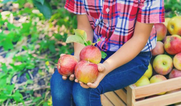 Owoce i warzywa warto spożywać w jak najmniej przetworzonej formie