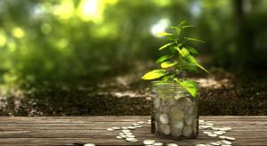 Z powodu COVID-19 przychody Lasów Państwowych spadły o ponad 630 mln zł