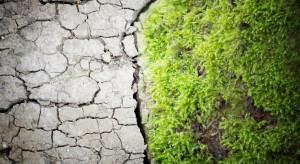 Nowoczesne technologie i cyfryzacja mogą służyć klimatowi