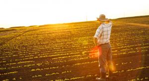 Trwają prace nad Krajowym Planem Strategicznym w resorcie rolnictwa