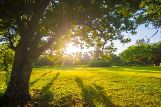 Prognoza pogody: ostatni weekend lata będzie ciepły i słoneczny