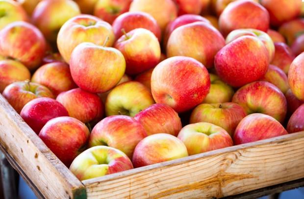 Bronisze: Coraz niższe ceny jabłek w hurcie