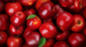 MRiRW: Polska jest największym producentem jabłek w UE i trzecim na świecie