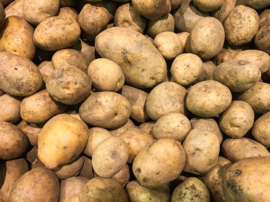 Ekspert: Wysokie zbiory ziemniaka, ale niskie ceny