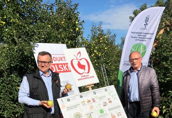 KOWR i PIORiN podkreślają wyższość rodzimych jabłek nad importowanym cytrusami