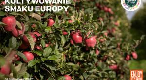 Jesień to czas jabłek – co kryje się w tych owocach?