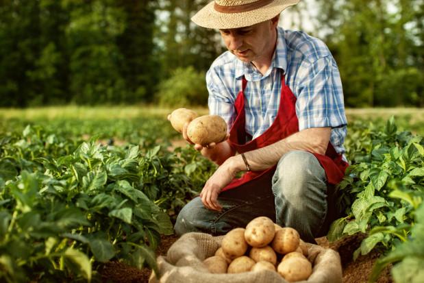 MRiRW: Zasiłek chorobowy dla rolników przedłużony