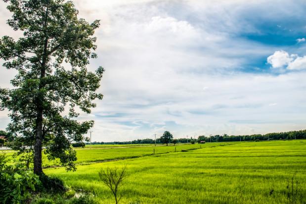 KOWR przejął za długi 7 gospodarstw na kwotę 6.406 tys. zł